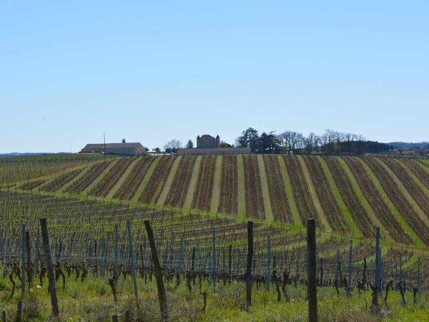 Le Château de Chambert, vu de la route qui monte de la vallée du Lot.