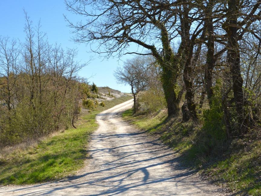 Invitation à la promenade, sur le plateau calcaire qui domine la vallée du Lot. Les vins d'ici se distinguent par une belle minéralité tout en étant aériens, fruités, élégants.