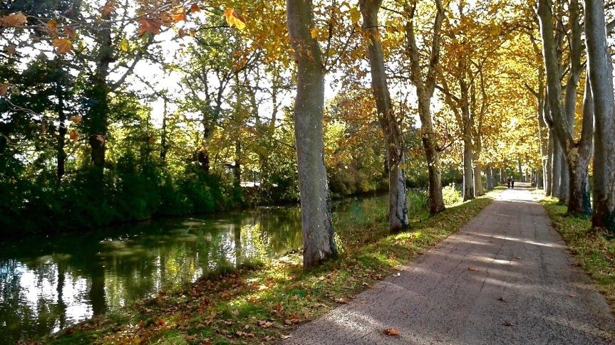 canal_du_midi (1)