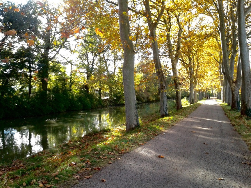 canal_midi_1